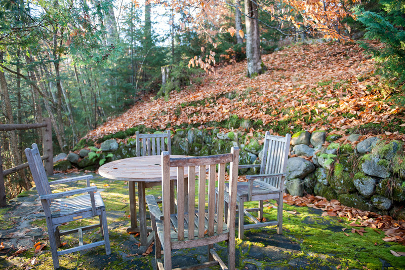 A cozy hideaway with a carpet of fallen leaves.