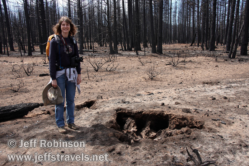 Lynda beside a large tree stump hole. A fire had recently burned through here, and in many places there are giant holes in the ground in a perfect mold of where the tree stump and roots used to be before they burned away. (9/6/2009, Hat Creek Rim hike, Pacific Crest Trail near 44/89 junction)