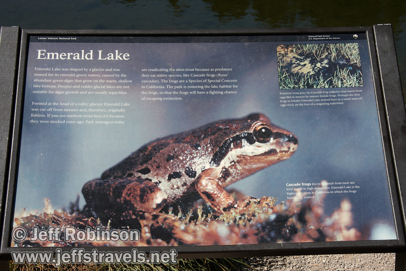 Emerald Lake sign about Cascade frogs (9/7/2009, Lassen NP)