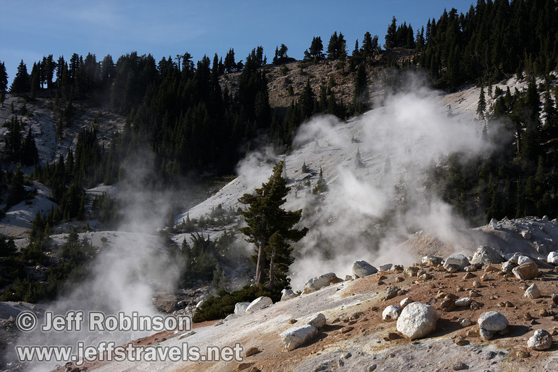 White, yellow, and orange ground and green trees in front of steam, seen from the east end of Bumpass Hell looking west (9/7/2009, Bumpass Hell Trail, Lassen NP)