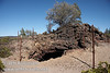 A fenced-off collapsed volcanic vent at marker 11 (9/8/2009, Spatter Cones Nature Trail, Lassen NF)