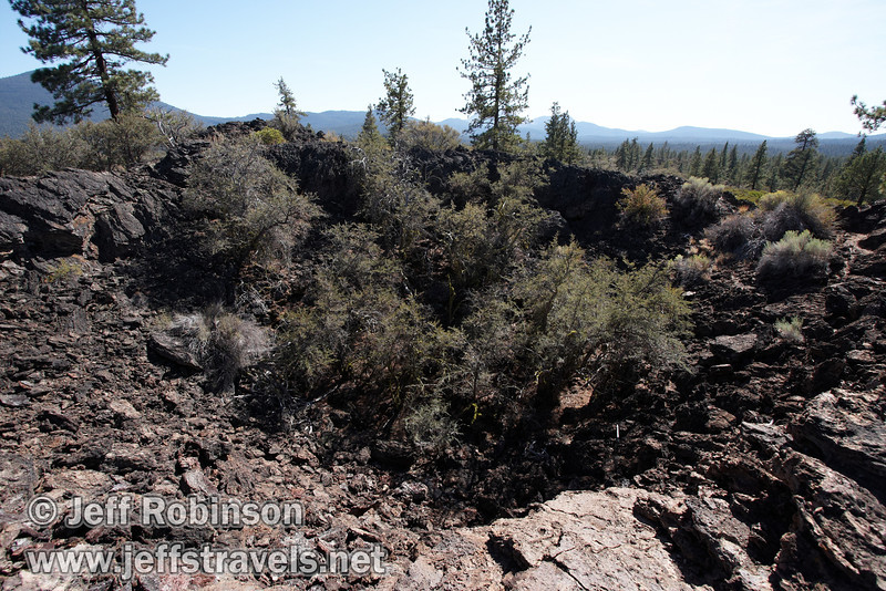 Views of Beaut Cone and the surrounding trees at marker 9 (9/8/2009, Spatter Cones Nature Trail, Lassen NF)