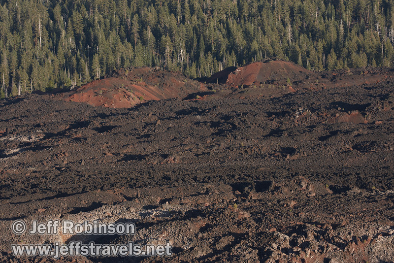 The edge of Fantastic Lava Beds with some red dunes in front of the forest (probably looking mostly east) (9/11/2009, Cinder Cone hike, Lassen NP)