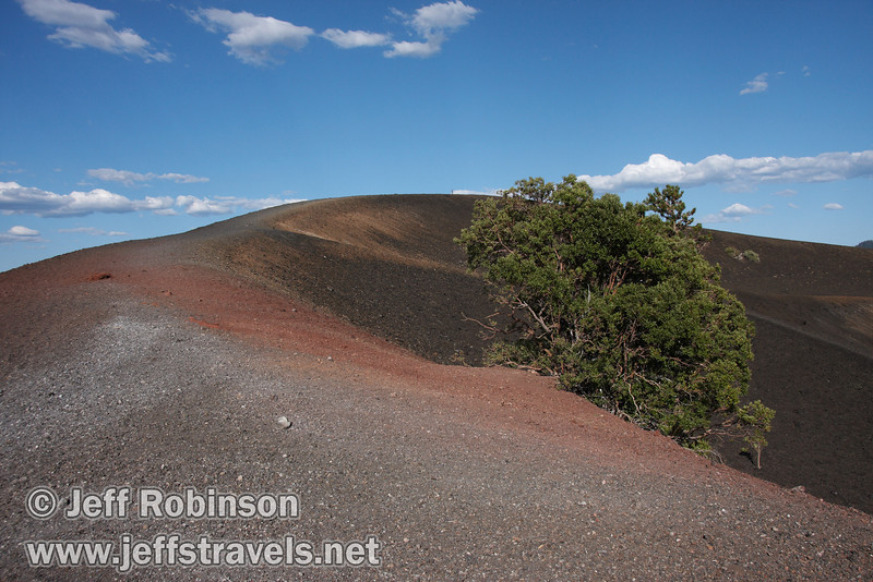 The red rock of the rim trail on Cinder Cone, with a tree growing to the side (9/11/2009, Cinder Cone hike, Lassen NP)