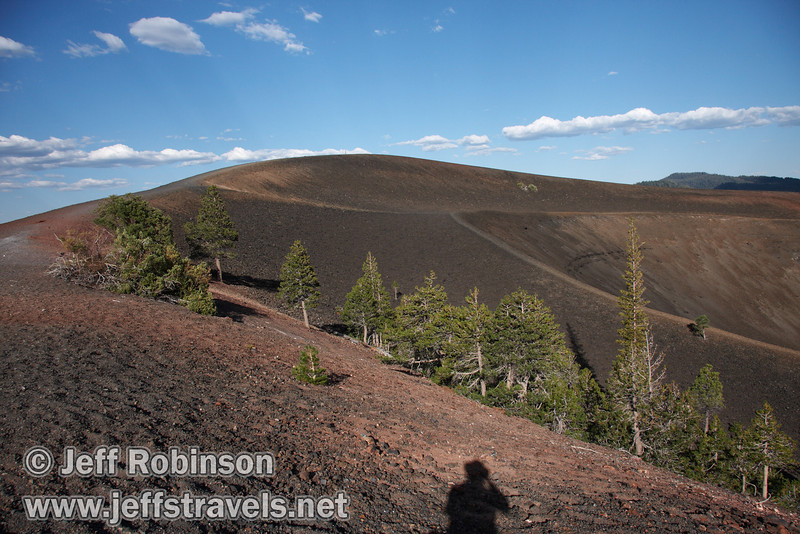 The trees and trail system on the top of Cinder Cone, along with my shadow (9/11/2009, Cinder Cone hike, Lassen NP)