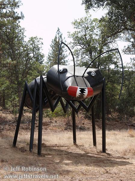 Ant (9/12/2009, sculptures at Packway Materials Inc., 22246 Cassel Rd. Cassel, CA)
