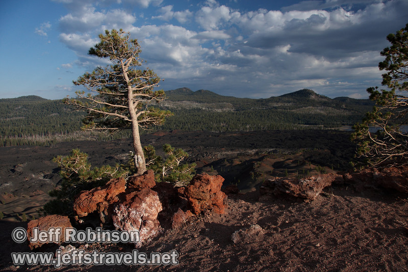 Red rocks and wind blown trees on the top of Cinder Cone by the top of the southern trail entrance, with the Fantastic Lava Beds,  Snag Lake, and mountains in the background (9/11/2009, Cinder Cone hike, Lassen NP)