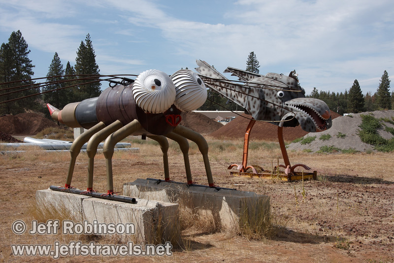 Dragon fly and chicken hawk made from a VW bug (9/12/2009, sculptures at Packway Materials Inc., 22246 Cassel Rd. Cassel, CA)