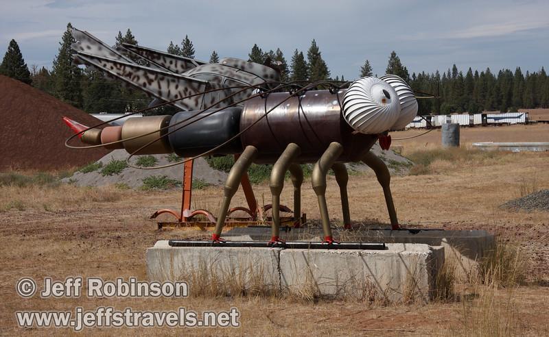 Dragon fly (9/12/2009, sculptures at Packway Materials Inc., 22246 Cassel Rd. Cassel, CA)