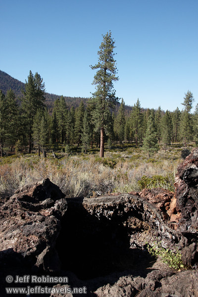 The entrance to the splatter tube at  marker 17 with the forest behind it (9/8/2009, Spatter Cones Nature Trail, Lassen NF)