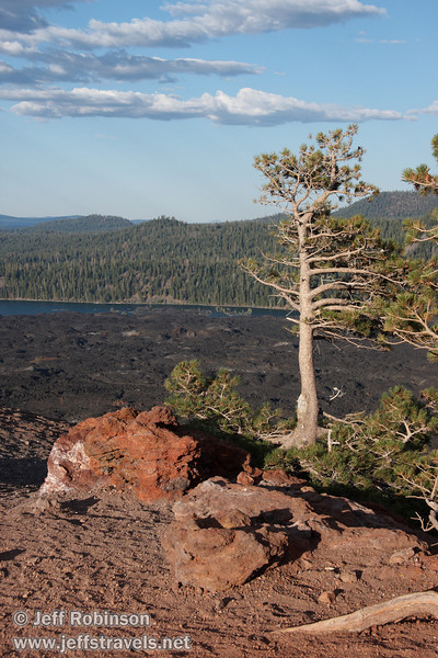 Red rocks and wind blown trees on the top of Cinder Cone by the top of the southern trail entrance, with the Fantastic Lava Beds and Butte Lake in the background (9/11/2009, Cinder Cone hike, Lassen NP)