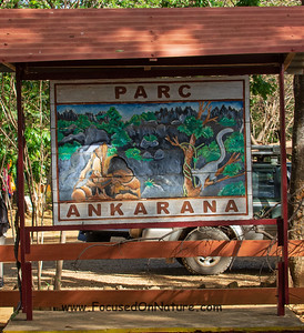 Ankarana Sign
