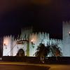 The Medival Times castle!