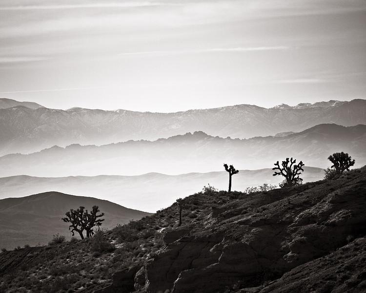 <em>Mojave Haze</em> Copyright 2009 Ken Walsh