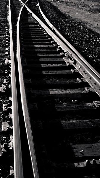 <em>Diverging Paths</em> Nipton, CA Copyright 2008 Ken Walsh