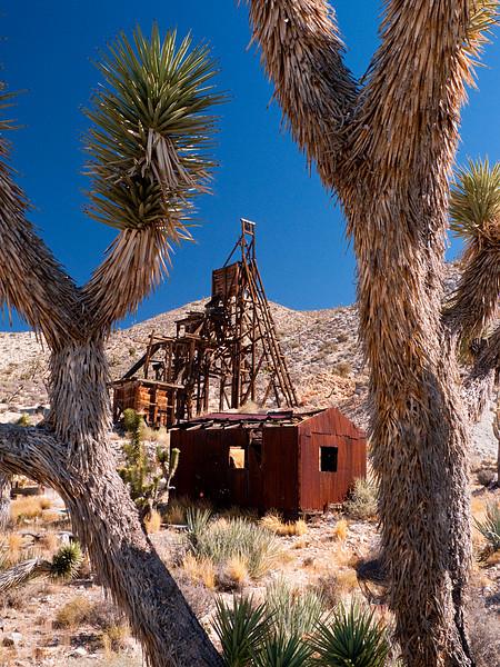 <em>Desert Queen Mine</em> Mojave National Preserve Copyright 2008 Ken Walsh