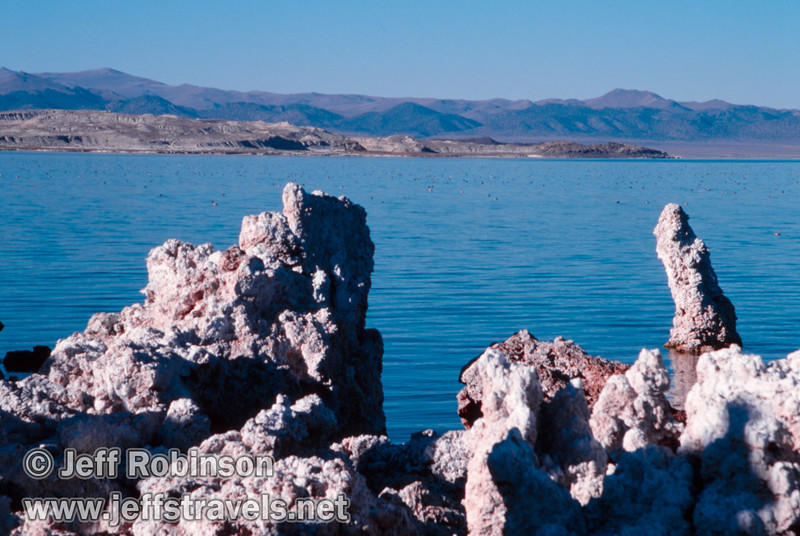 View over Tufa of distant Paoha Island with thousands of birds floating in the lake. (South Tufa, Mono Lake 2002)