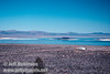 View of Mono Lake with the black Negit Island. Seen from vista point near Lee Vining (Mono Lake 2002)