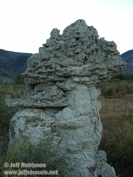 Tufa formations among the grass. (Fall 2002, Mono Lake Park, Mono Lake)