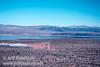 View of Mono Lake from vista point near Lee Vining (Mono Lake 2002)
