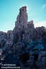 Tall tufa formation. (South Tufa, Mono Lake 2002)