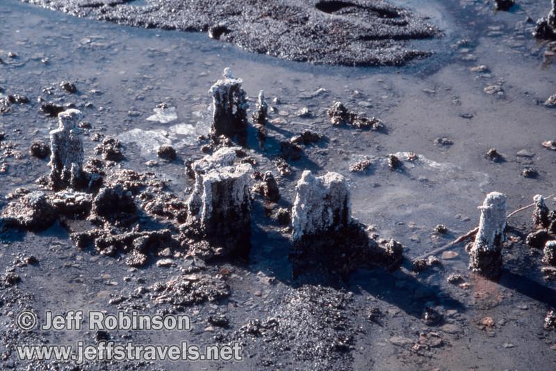 Small tufa formations on the edge of Mono Lake. (South Tufa, Mono Lake 2002)