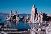 Tufa with birds on top in the edge of Mono Lake. (South Tufa, Mono Lake 2002)