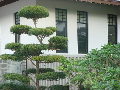 Morikami Museum & Japanese Gardens