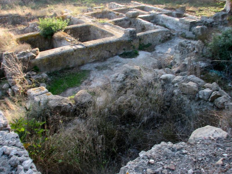 Historic site De Lixus, North of Larache (North Morocco 2009)