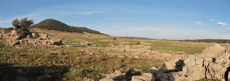 panorama of  foret de Cedres (North Morocco 2009)
