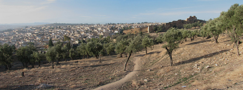 the city walls of Fes (North Morocco 2009)