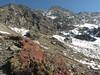 Landscape and Androsace plants, Cliola Kharka 4150m-Kothe 3700m