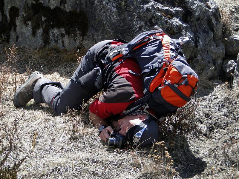 High Alpines photography, Tangnag 4300m-Kare 4950m