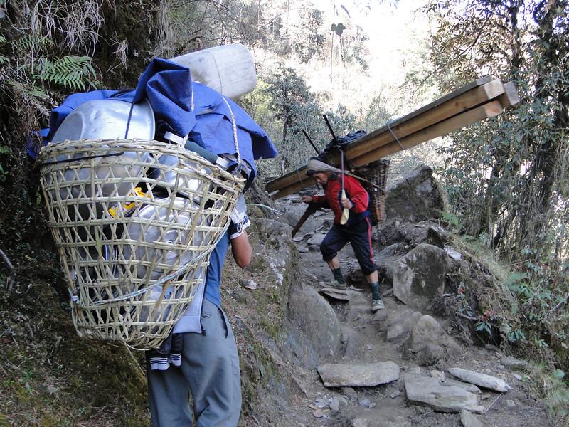 Wood transport, Puyan 2750m-Pangkom 2850m