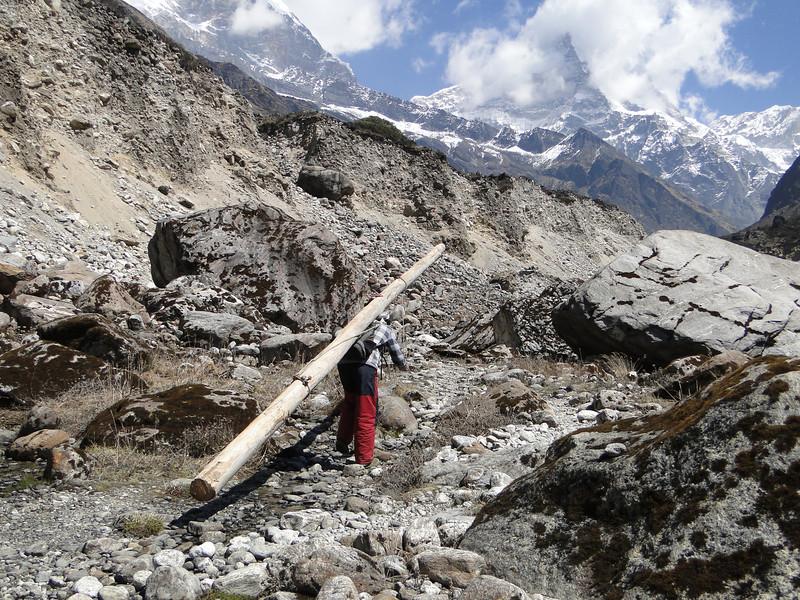 Wood transport, Kothe 3700m-Tangnag 4300m