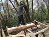Wood sawing in the forrest, Pangkom 2850m-Najing 2600m