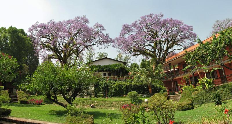 Garden of the Summit Hotel, Kathmandu