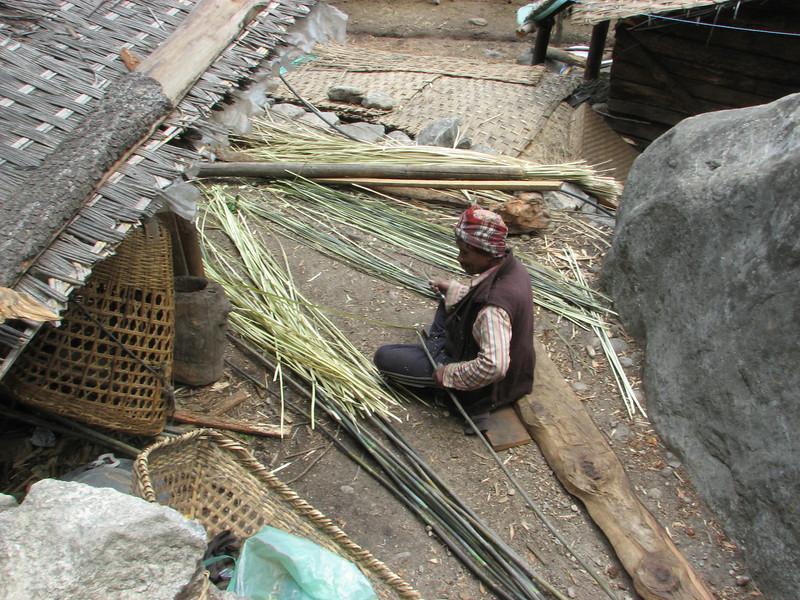 Twining bamboo, Lukla 2800m-Monjo 2900m