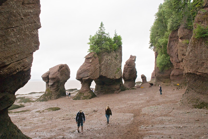 This is a ground-level shot of the formations at Hopewell Rocks Park, New Brunswick.