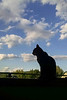 2015-08-05 Another shot of Cat on a Windowsill