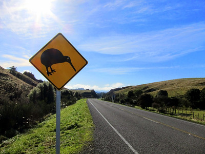 New Zealand North Island 2011 - SET 2