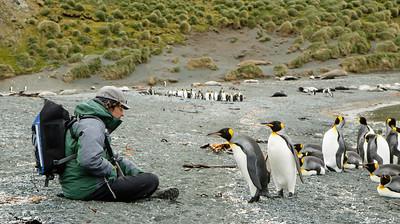 Nikolas and King Penguin (Aptenodytes patagonicus)