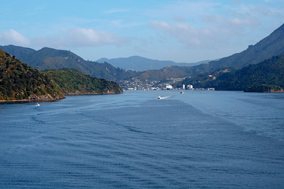 Ferry trip from Picton to Wellington, NZ - 05