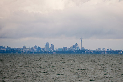 Skyline (Auckland) seen from Tiritiri Matangi Island - Auckland, NZ