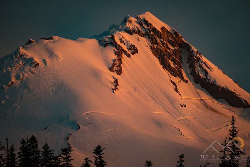 The amazing Newton Clark Headwall of Mount Hood at dawn.