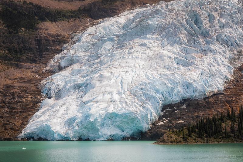icelang-L.jpg