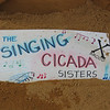 "The singing Cicada Sisters ""brood X"""