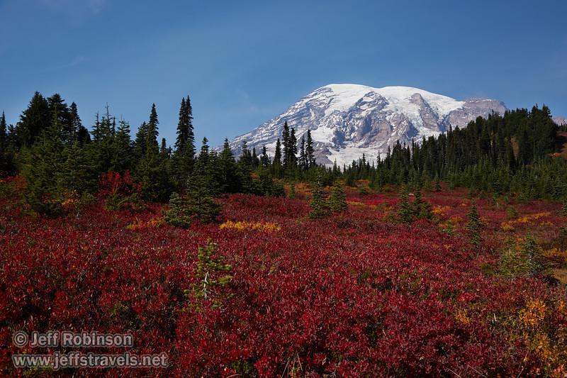 (9/11/2015, Skyline Trail, Mt. Rainier NP, WA)<br /> EF24-105mm f/4L IS USM @ 35mm f/9 1/250s ISO100