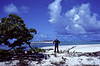 Standing on a small island just north of the northern tip of the main island on Enewetak atoll.