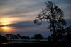 Pantanal dawn Brazil.